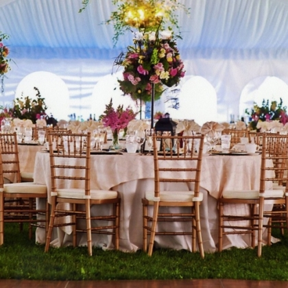 Party city rentals party city cyprus wedding cyprus wedding tableware equipment junglespirit Choice Image