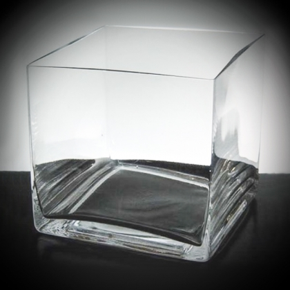Square Glass Vase/Container