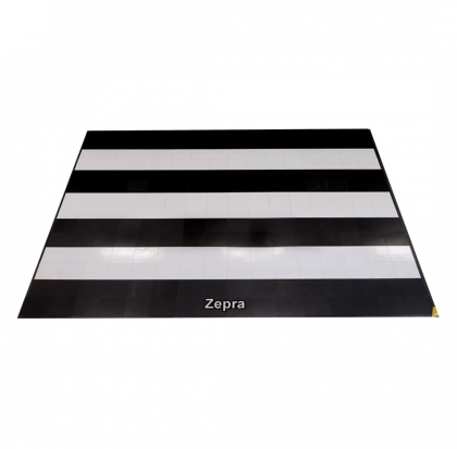 Dance Floor Zebra