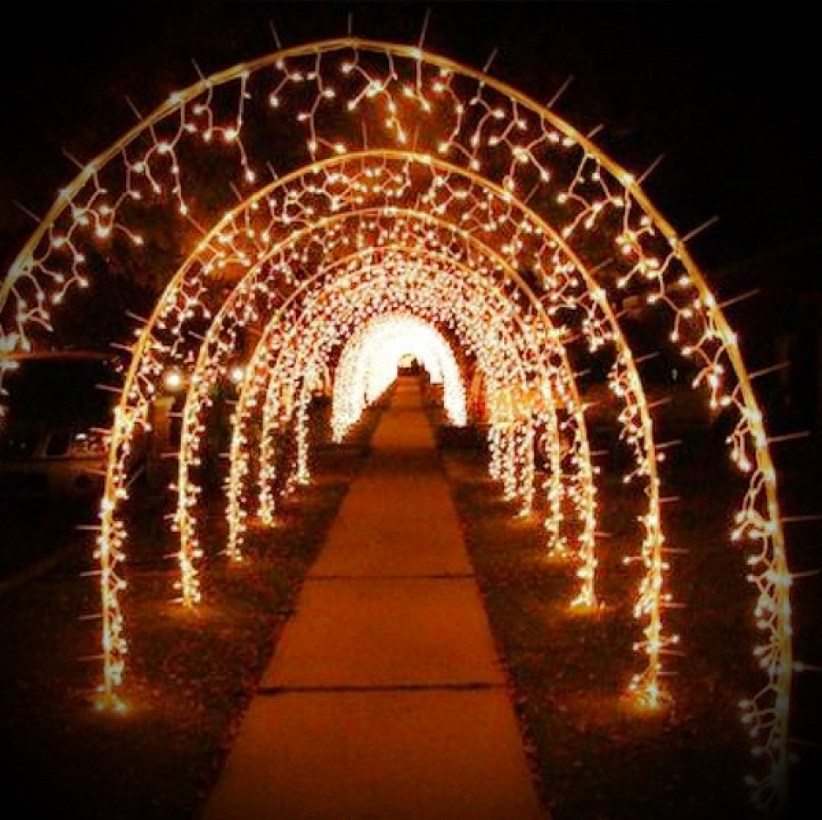 Fairy Light Arch