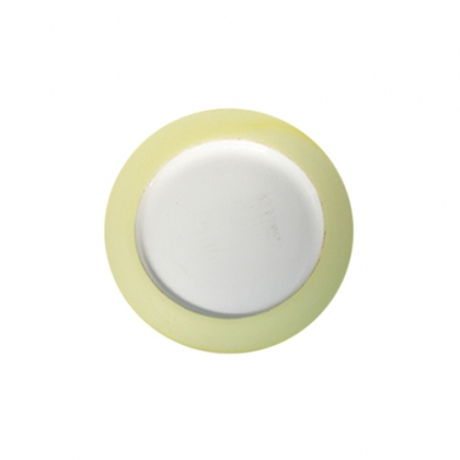 Round Plate with Yellow Rim 27cm